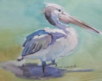 Pelican Original Watercolor Painting