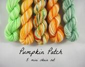 5 Sock Mini Skein Set- 20 yards each- Pumpkin Patch