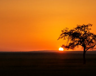 Sunrise greeting card, african sun rise over masai mara, sunrise in africa from original photograph by R&M Photography