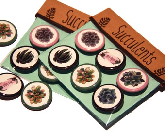 Succulent Pinback Button Set (6 pieces)