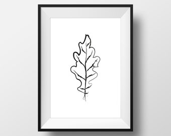 Black & White oak leaf