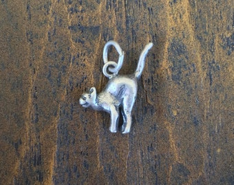 Scary Cat 925 Silver Charm- Free Shipping within USA