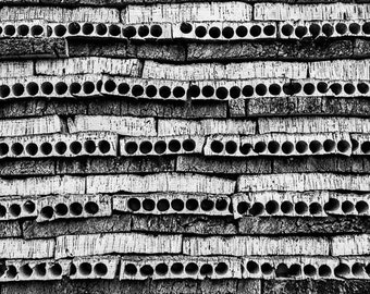 Corked, black and white photography, abstract photography