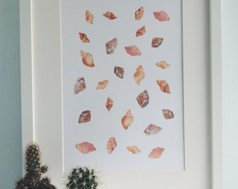 Shell pattern A4 Illustration Print