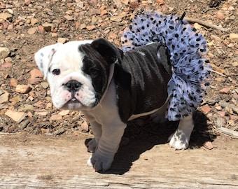 Polka Dot Tutu For Bulldogs/Polka Dot Tutu For Pets/Polka Dot Tutu For Dogs/Black & White Polka Dot Tutu For Pets