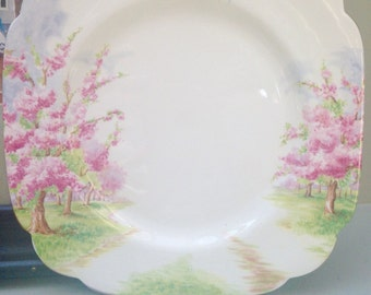 Royal Albert Blossom Time Salad or Lunch Plate