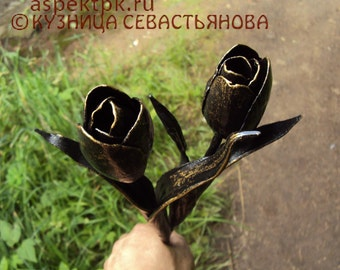 Blacksmith tulips