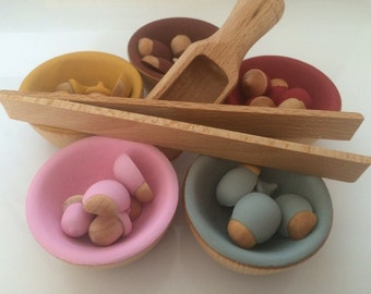 Bugs and acorns wooden sorting set Montessori Children's Toy