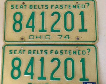Ohio 1974 license plate pair