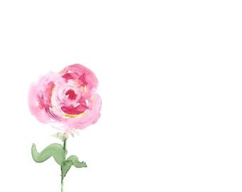 Rose, watercolor