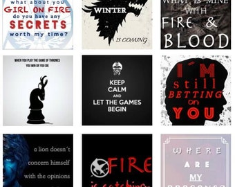 Hunger Game of Thrones magnets Set