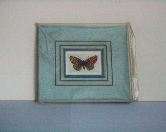 "Butterfly ""Glanville Fritillary"" - Mounted print"