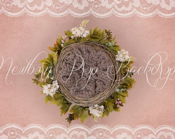 Newborn Digital Backdrop (flower/nest/white/wine)