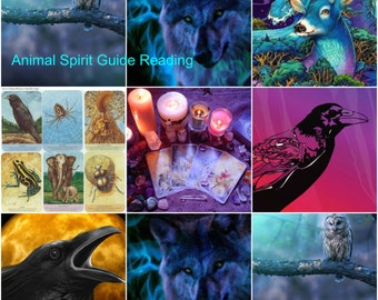 Animal SOUL Guide, Soul Totem Guide Reading, Animal SOUL Totem Reading *Native American Experienced Reader Who Cares About You!*