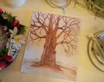Old oak tree Ink  art print