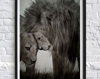 Lion and Lioness pencil drawing, Print of couple of big cats, Lion black and whiteA2  print, Lion couple cuddles
