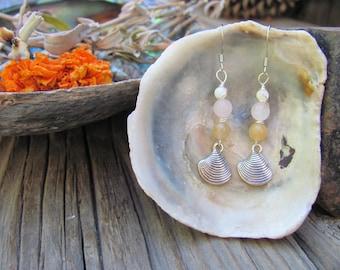 California seashells