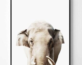 Elephant Print, Elephant printable Wall Art, Safari animal, Animal print, Animal Decor, Safari African Animal Print, Scandinavian printable