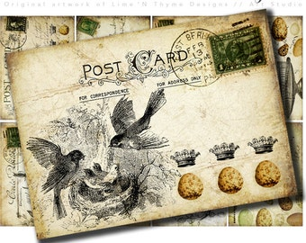 Old Chic Postcards / ATC backgrounds / collage sheets / vintage ephemera / scrapbook paper / vintage birds / vintage stamps / eggs Aceo AH