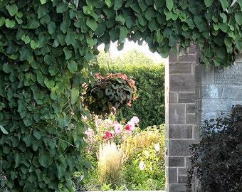 Secret Garden - Print your own wall print