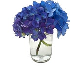Blue Hydrangeas, Art Print