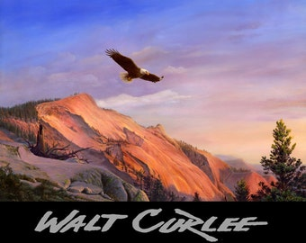 Eagle Art, Bird Art, Eagle Flying, American Bald Eagle Flying Arizona Mountain Landscape Giclee Print, Western Decor, by Walt Curlee