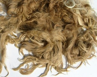 Suri Alpaca Fleece, 10 ounces, Fawn Fiber for Spinning, Felting, and Dolls,  Unwashed Fibre, from Masterpiece