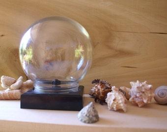 Vintage Glass Display Globe, Flower Aquarium Terrarium Ball
