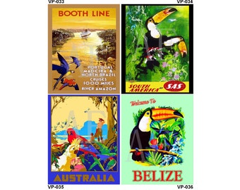 VP033-036 Vintage Travel Poster Art - One 8x10 or Two 5x7s - Parrots Toucans, Booth Line Brazil, South America by SAS, Australia, Belize
