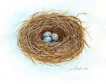Mockingbird Trio-Signed Print of an original watercolor painting of a birds nest
