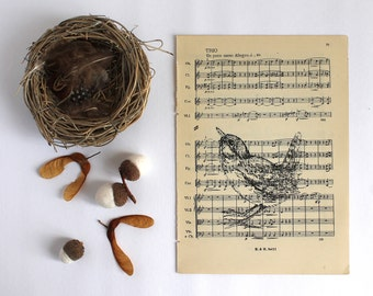 Standing Wren Print  Gocco Printed Bird Print on Vintage Music
