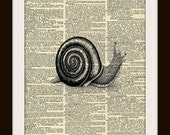 Art Print SNAIL 8x10 Dictionary Gold Gulided Vintage Page