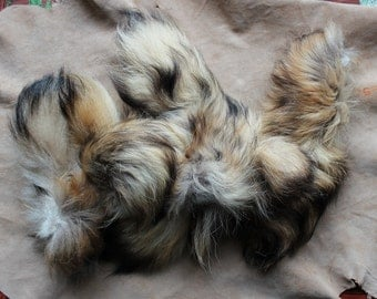 Small priority box full of real tanuki raccoon dog tails for small craft, fly tying and display DESTASH