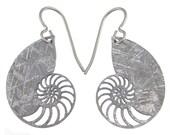Nautilus Gibeon Meteorite Earrings