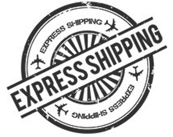 Express Shipping Upgrade for Your Order