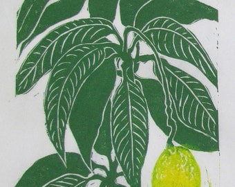 Mango, limited edition linoleum block print, printed and signed in pencil by the artist