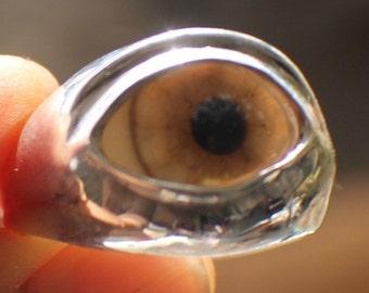 SZ 17 Sterling Silver Prosthetic Glass Eyelid Ring