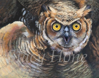 Owl painting - Owl - Bird - Who - Eyes - 11 x 14 Painitng