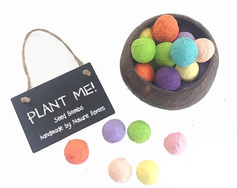 100 Kids Seed Bomb Boy or Girl Birthday Party Favors & Decor - Vegetable Seeds, Herb Seeds, Flower Seeds - Fun Bright Birthday Party Colors