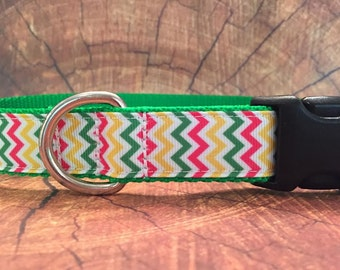 Sale Dog Collar, Colorful Chevron Print In Size L Only