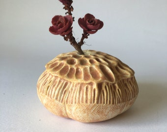 Golden Brown Anemone Pod Vase for One Flower Ceramic Vessel 5