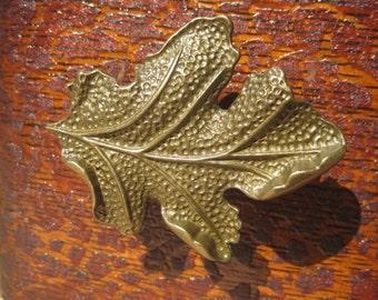 Oak Leaf Drawer Knobs - Cabinet Knobs - Furniture Knobs in Brass (MK104)