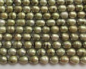 Olive Green 8mm by 6mm Rice Freshwater Pearls 15.5 inches (39cm)