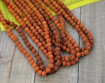 Rudraksha Beads, 6mm, 100 Beads, 24 inch  String,   Natural Seed beads -B561