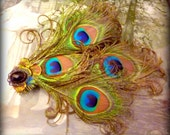 Great Gatsby, Peacock Feather Hair Clip,  Hair Accessory, Feather Fascinator, Headdress, Costume