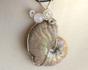 Opalized Pearlized Iridescent Ammonite Fossil Shell Pendant