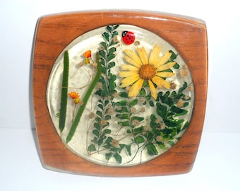 Vintage Acrylic Trivet with Painted Ladybug Dried Flowers and Leaves Inside