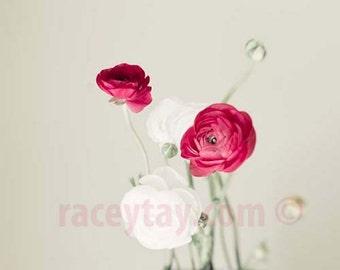 Ranunculus Print, Pink, White, Flower Photography, Girl Nursery Decor, Beige, Neutral Decor