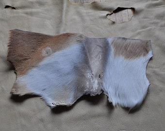 Large Impala Leather Fur Scrap