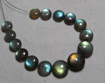 Labradorite - High Quality - AAAAA - Smooth Polished Coin shape Briolletes so Amazing Gorgeous Multy Fire Huge size - 9 - 12 mm - 15 pcs